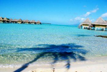 Micronesia micronesia-Palau-tuffarsi-nella-barriera-corallina