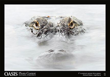 Fotografia Richard Peters, Inghilterra. Secondo classificato nella sezione