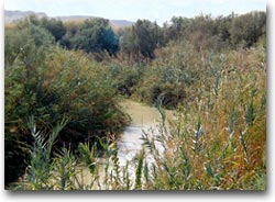 Il tratto del fiume dove sarebbe stato battezzato Gesù
