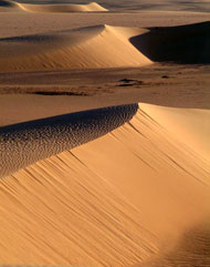 L'immensità del deserto del Ténéré