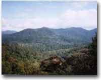 Il Monte Gunung Tahan