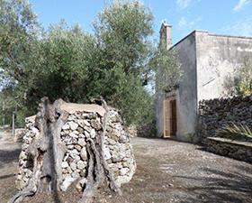 tour La Chiesa di San Vito a Calimera tra gli ulivi