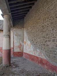 La domus di Romolo e Remo