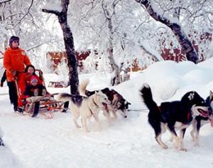 Viaggio polare nei segreti di Kiruna