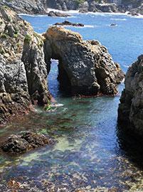 Monterey Point Lobos, lungo il Big Sur