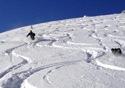 Divertimento sugli sci (Foto: Gerhard Lödl)