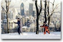 Parchi trasformati in lunghi percorsi per lo sci di fondo