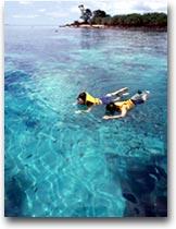 Koh Phangan Snorkeling in un mare trasparente