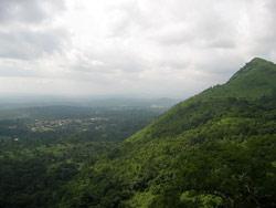 Verde Ghana