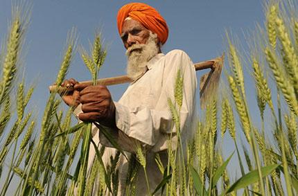 Foto: Narinder Nanu/AFP/Getty Images