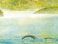 Il drago che emerge dalle acque lacustri