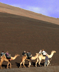 Bianco Il parco vulcanico di Timanfaya, visitabile in parte anche in groppa a un cammello
