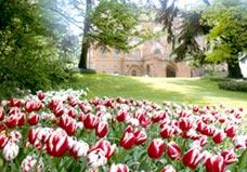 Il parco del castello di Pralormo circondato dai tulipani