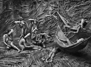 Genesi Brasile, 2009 - © Sebastião Salgado/Amazonas Images