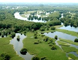 Kopacevo, terra di acqua e vegetazione