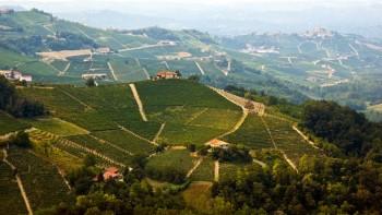 monferrato veduta colline