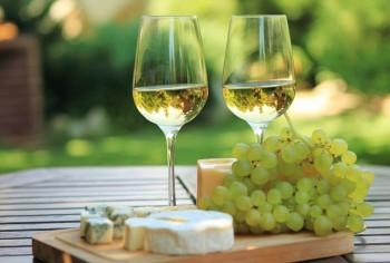 Toscana-Vino-vermentino