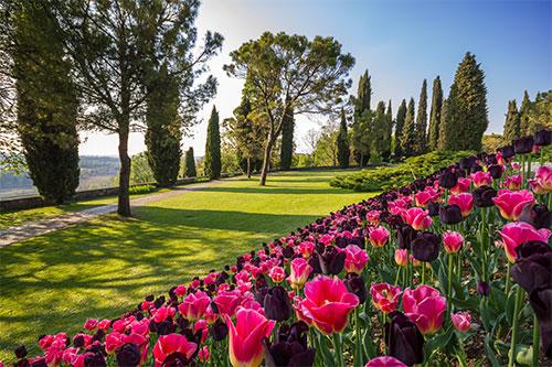 Parco Di Villa Sigurt Ef Bf Bd