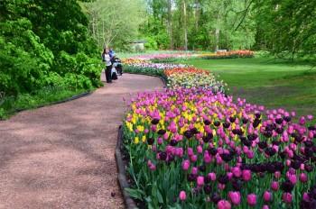Gent © Floralia Brussels (1)