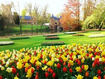 Gent © Floralia Brussels (4)