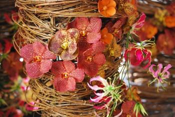 Gent Floralien-Gent ©Flowertime15 ©Tom Paulussen