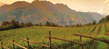 itinerari del gusto Trentino