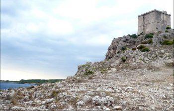 Torre dell'Alto, Porto Selvaggio