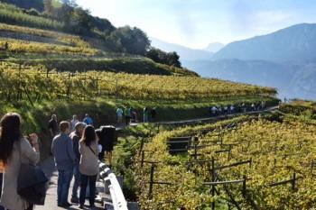 gusto viaggi Trentino
