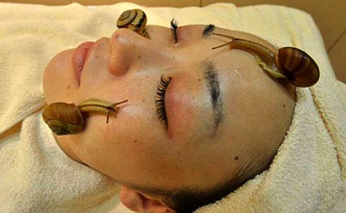 massaggio Giappone-massaggio-lumache