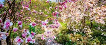 Giardini di Merano