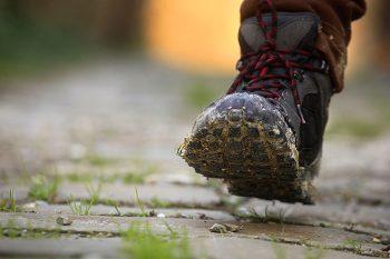 Cammini camminare via francigena