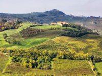 From Rovescala with… Bonarda