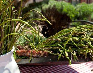 Istria: festa dell'asparago selvatico