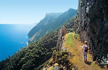 Arcipelago di Madeira Madeira-Nature