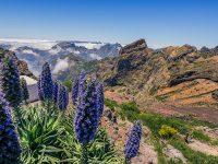 Madeira, Pico do Areeiro
