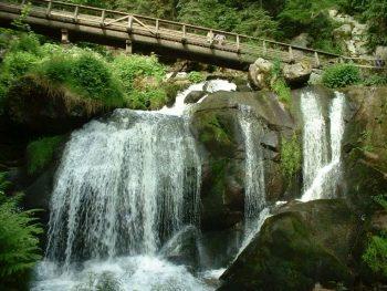 Parchi naturali Foresta-Nera-strada-panoramica