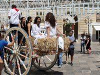 Tradizioni popolari in Puglia. Aradeo tra sacro e profano