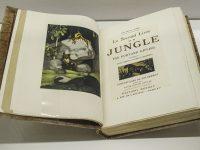 Il secondo libro della Jungla di Kipling (Ph Giovanna Dal Magro © Mondointasca)
