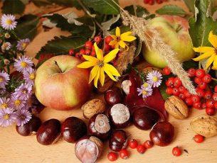 Castagne, tartufi e frutti di bosco per festeggiare l'autunno