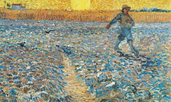 Van Gogh tra il grano e il cielo Vicenza 2017