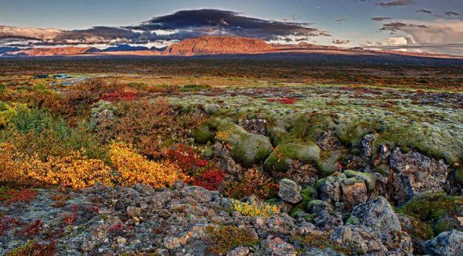 Islanda, prati smeraldo e colline di giada