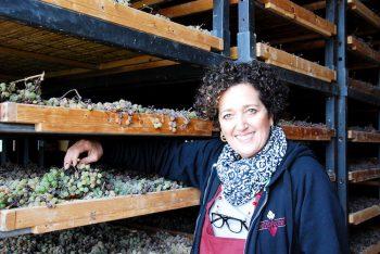 San Miniato Terricciola-(Pisa)-Azienda-Agricola-Castelvecchio-produce-Vin-Santo