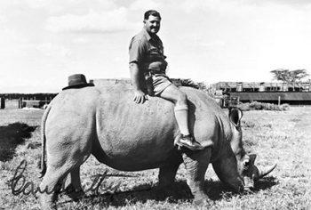 Imer Guala Africa-Angelo-Lombardi-su-un-rinoceronte